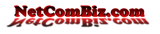 Domain Names, Website Hosting, and Dedicated Servers by NetComBiz.com